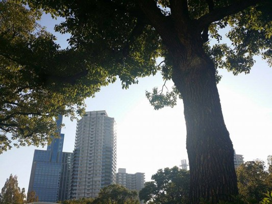 神戸三宮東遊園地近く|証明写真は三宮ココロスタジオで